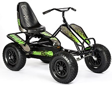 Dino X Quad Karts - Click on image for details
